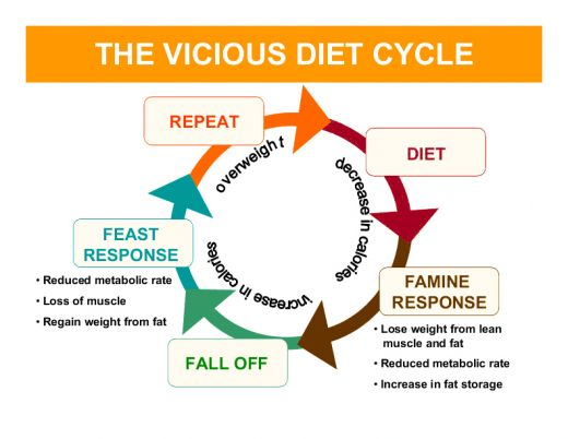 diet cycle